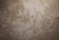 Aged limestone fossil