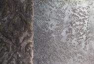 Verde Grey Fossil